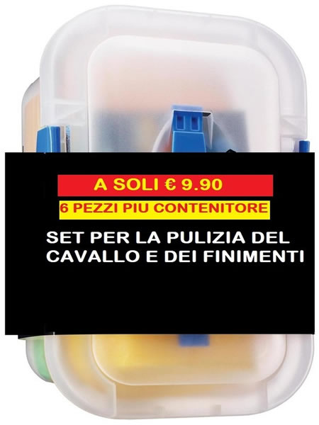 box pulizia cavallo e finimenti